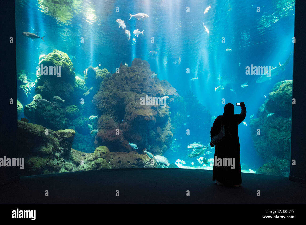 Aquarium at the Scientific Center in Kuwait City, Kuwait. - Stock Image