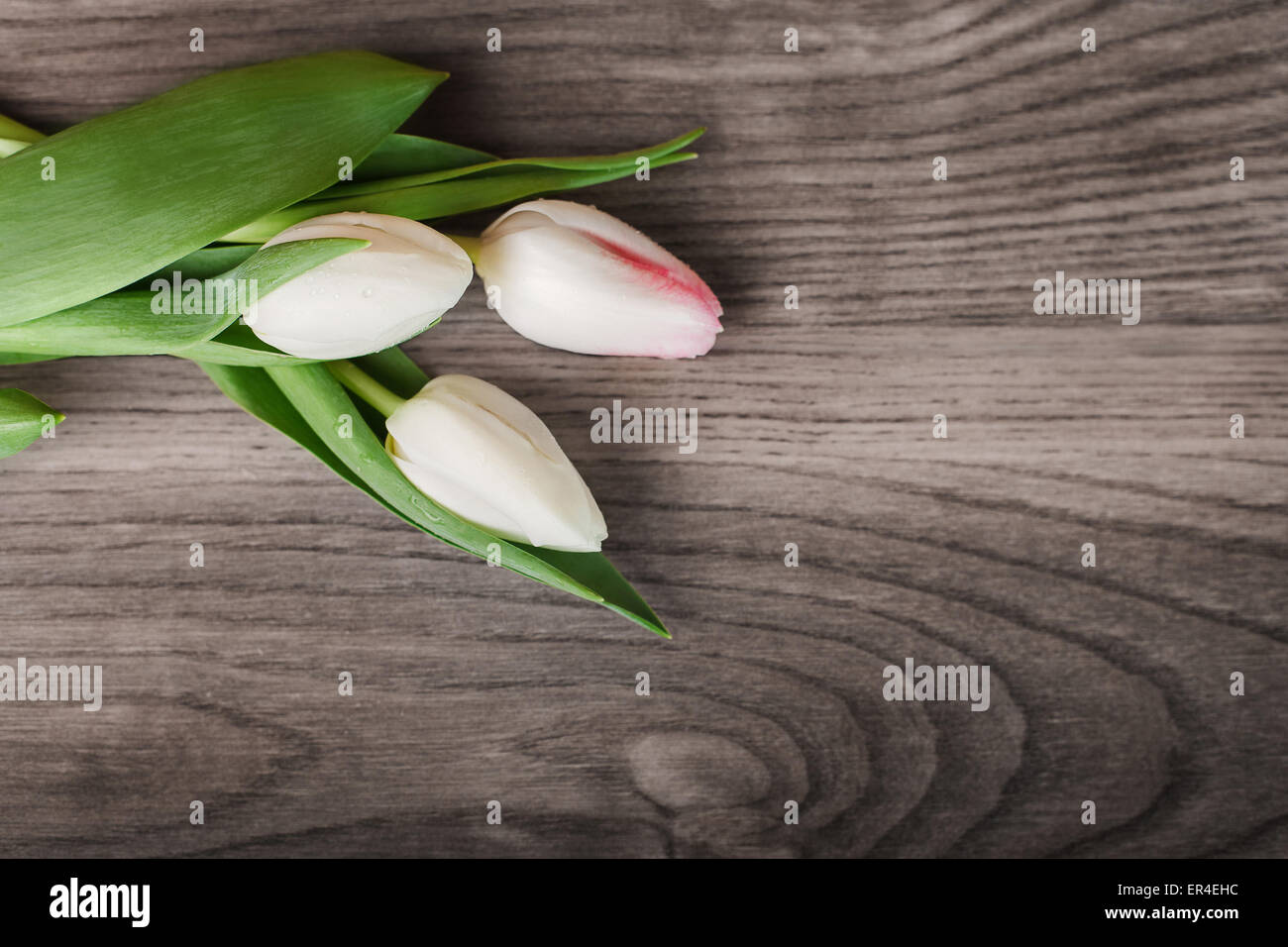 Tulips on a wooden table - Stock Image