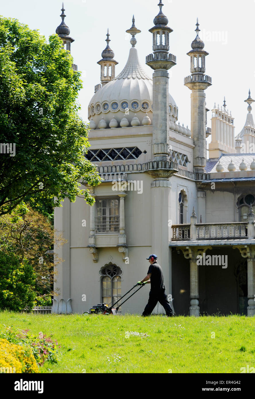 Brighton UK 27th May 2015 - Robert Hill-Snook the head gardener at Brighton's Royal Pavilion Gardens mowing the Stock Photo