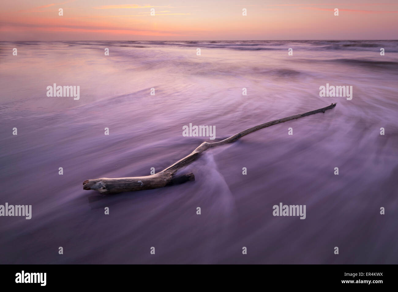 Branch On Beach With Waves Motion Blur - Stock Image