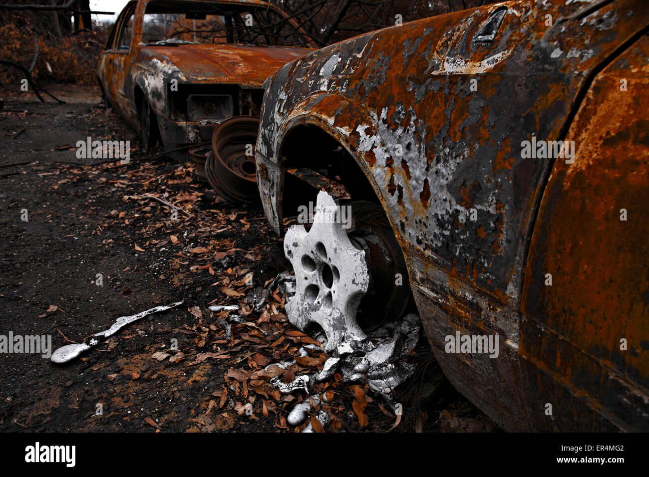australian bush fire damage,australian bush fire aftermath,post australian bush fire, Stock Photo