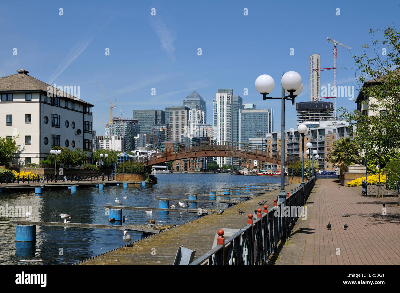 New homes at Millwall Outer Dock, Isle of Dogs, London UK, looking towards Canary Wharf - Stock Image