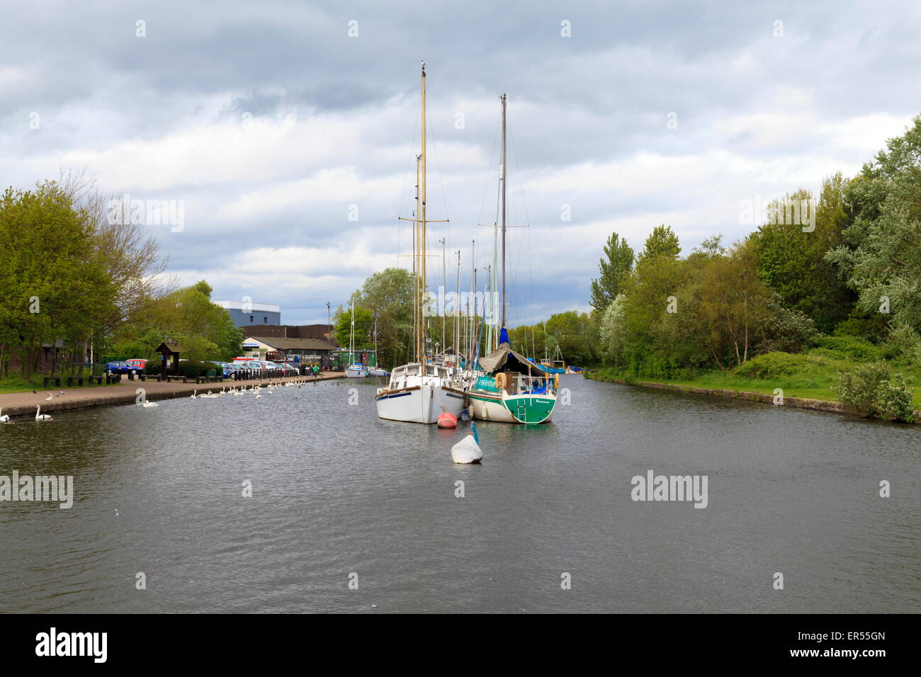 Yachts moored up on the Sankey Canal, Spike Island, Widnes - Stock Image