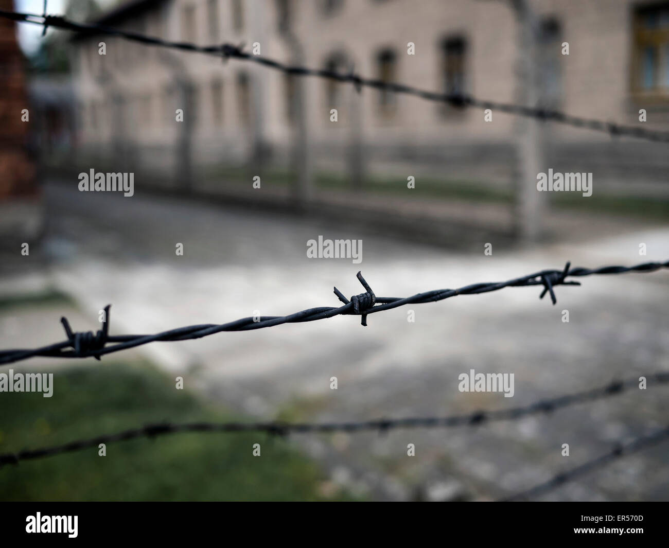 Prison Camp Barbed Wire Stock Photos & Prison Camp Barbed Wire Stock ...