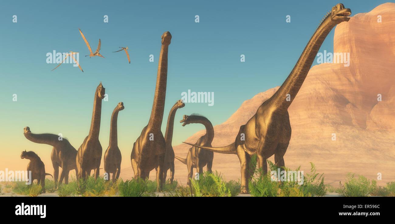 Three Pteranodon flying reptiles watch as a herd of Brachiosaurus dinosaurs travel near a canyon mountain. Stock Photo