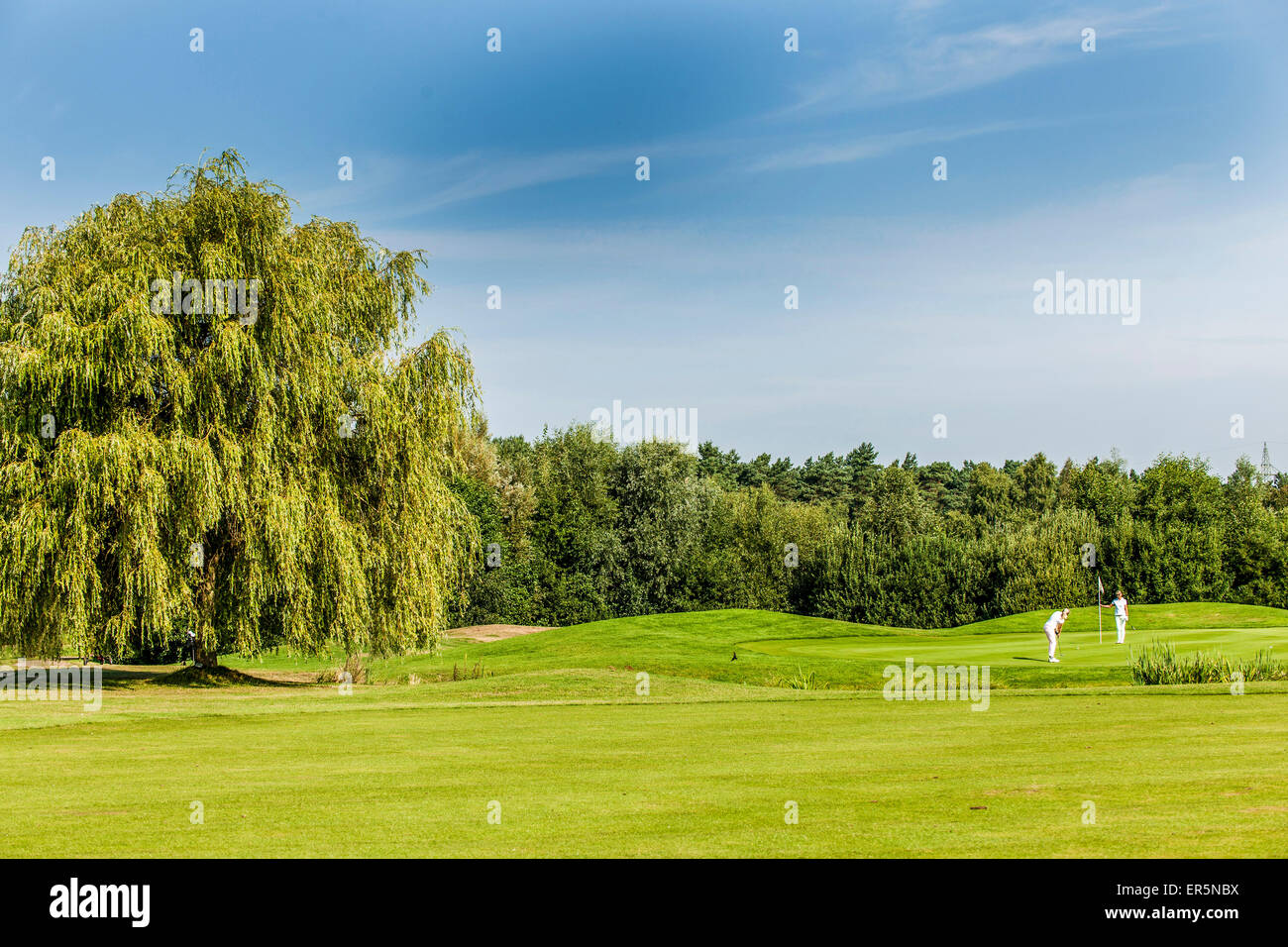 2 women golfers on the putting green, golf course Green Eagle, Radbruch, Winsen Luhe, Niedersachsen, North Germany, - Stock Image