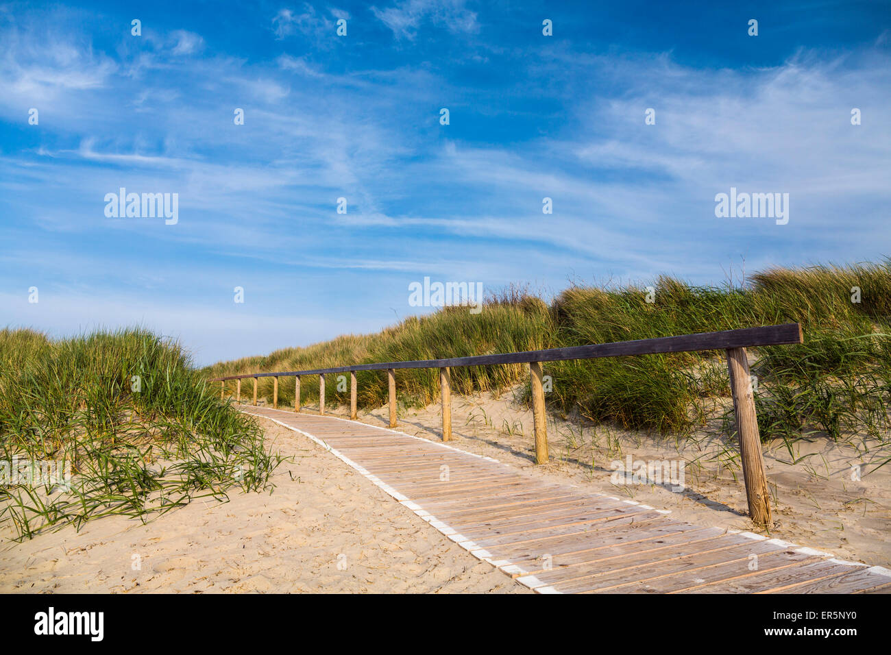 Boardwalk in the dunes to the beach, Langeoog Island, North Sea, East Frisian Islands, East Frisia, Lower Saxony, Stock Photo