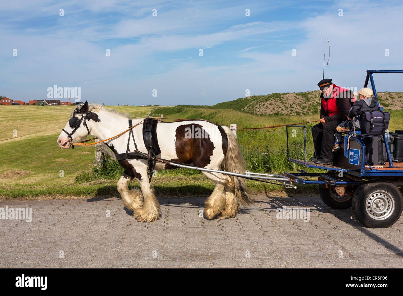 Horse and cart luggage service, Juist Island, Nationalpark, North Sea, East Frisian Islands, East Frisia, Lower - Stock Image