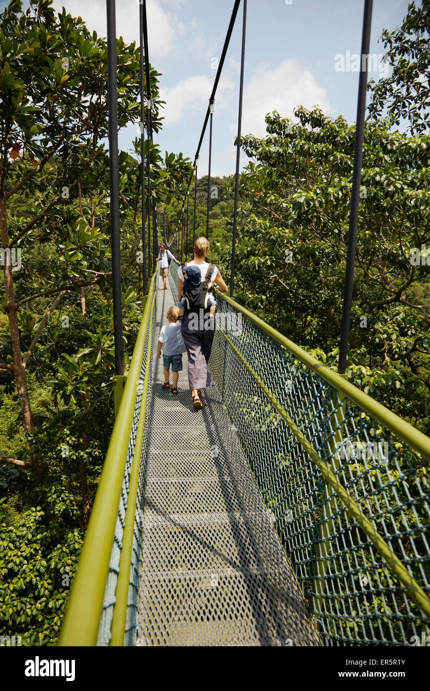 Family walking along a HSBC Tree Top Walk, MacRitchie Reservat, Singapore - Stock Image