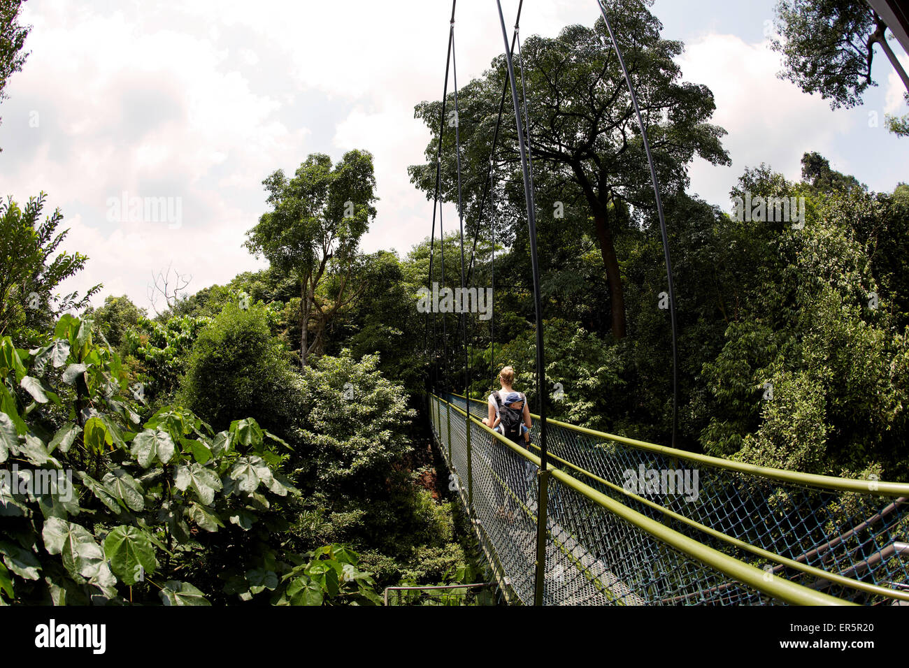 Mother carrying son along a HSBC Tree Top Walk, MacRitchie Reservat, Singapore - Stock Image