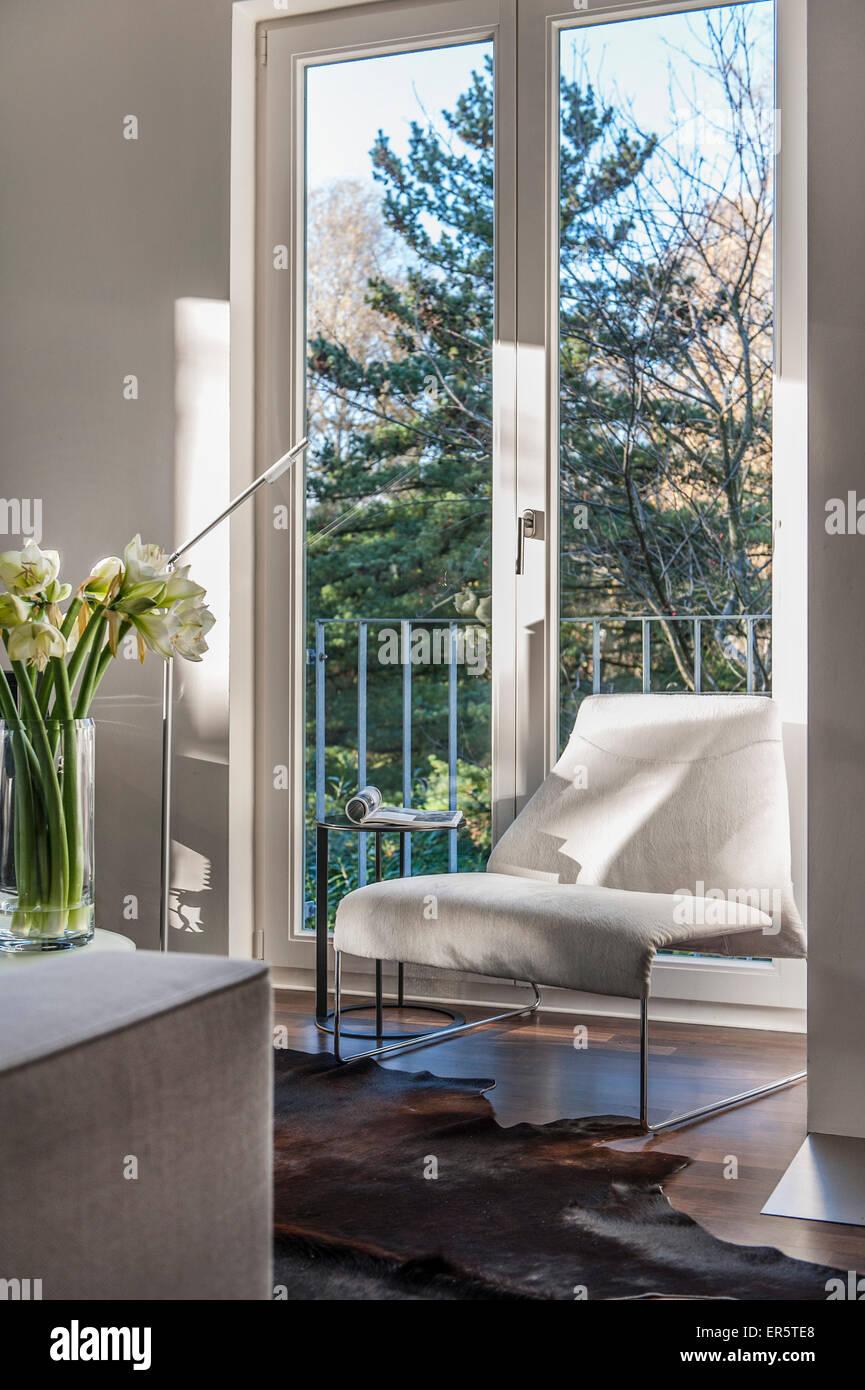 Vase with amaryllis modern furniture hamburg germany