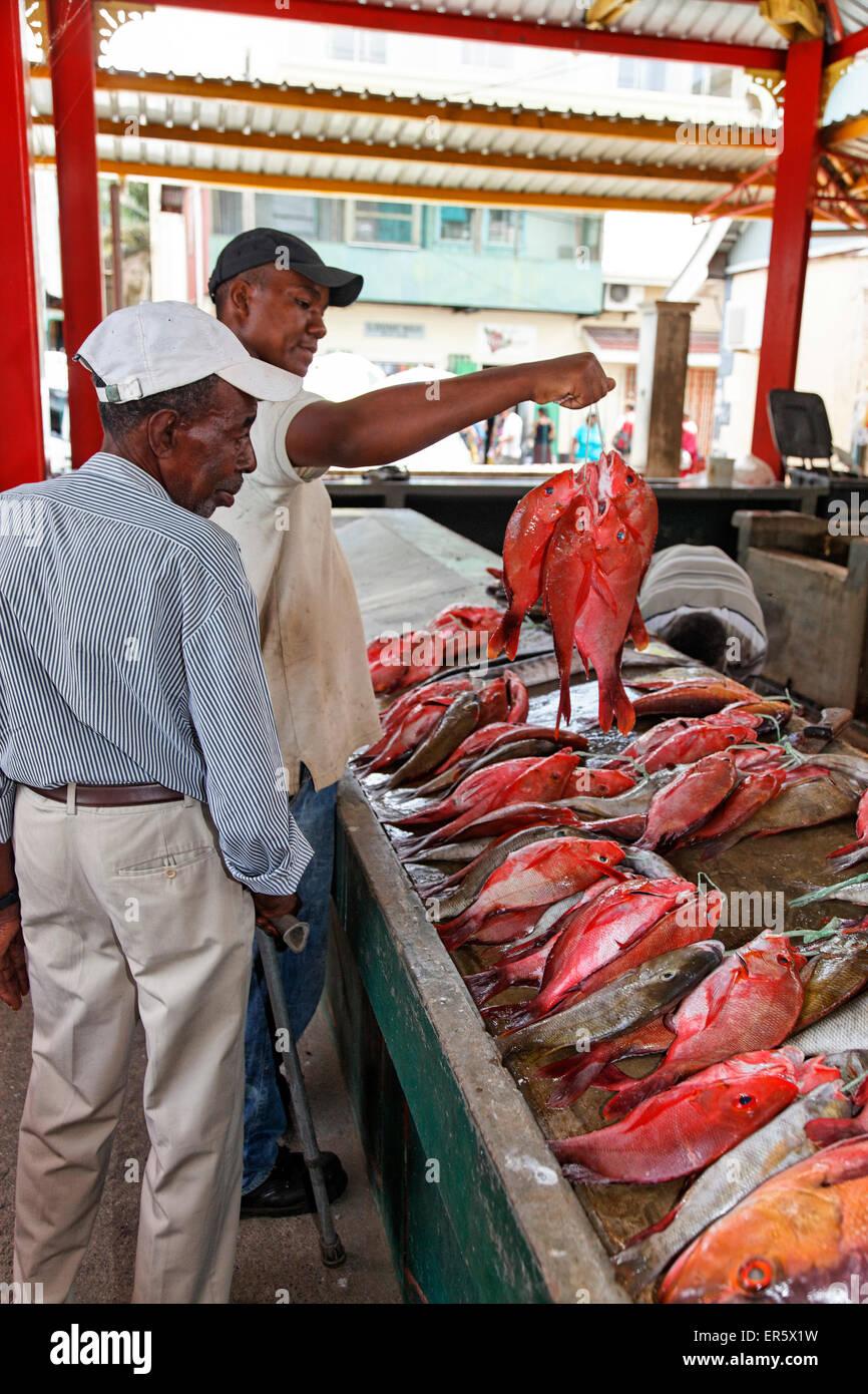 Victoria Fish Market, Mahe Island Seychelles, Indian Ocean - Stock Image