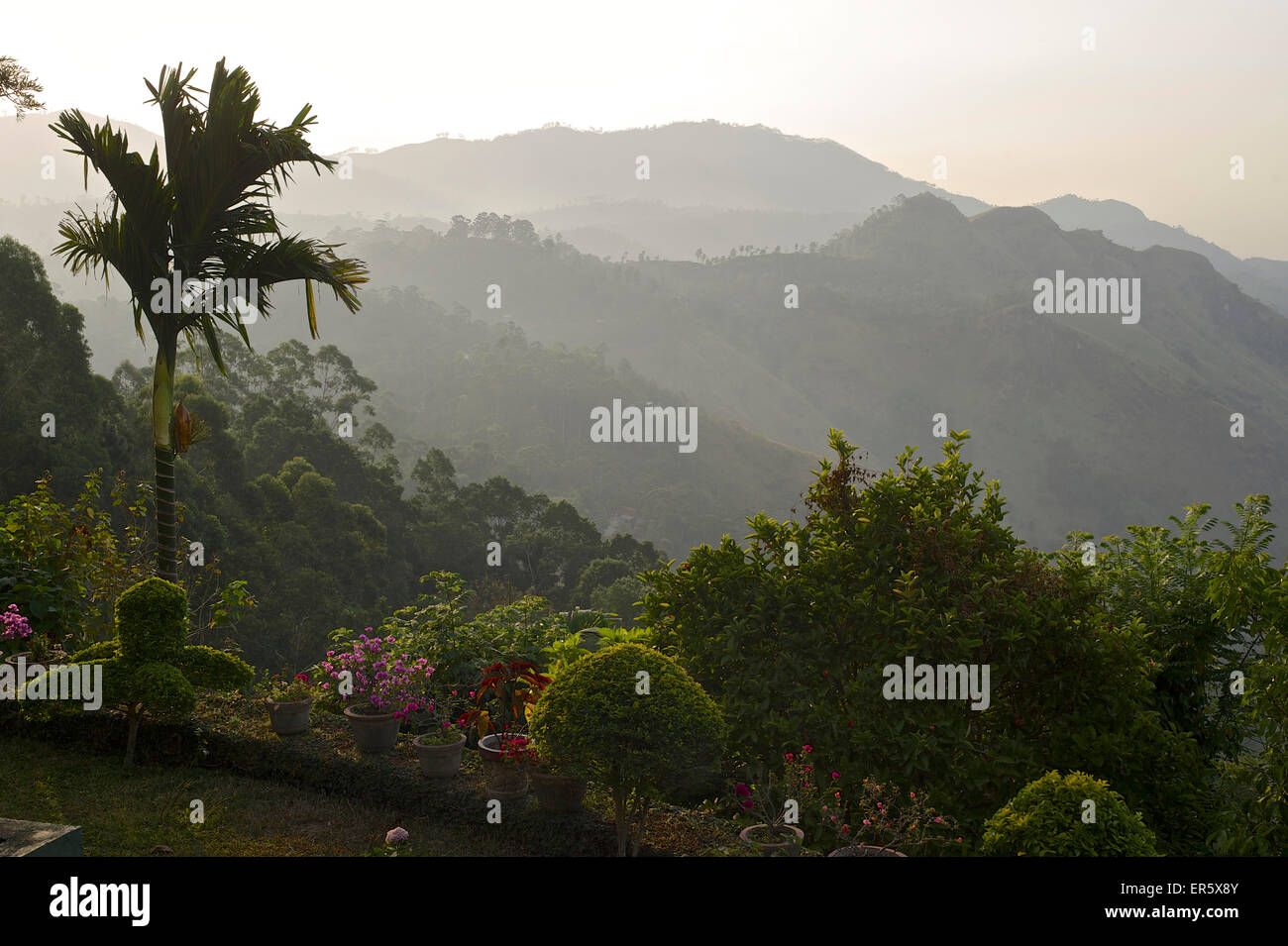 View from a garden over the hills at Ella, hill county, Sri Lanka Stock Photo