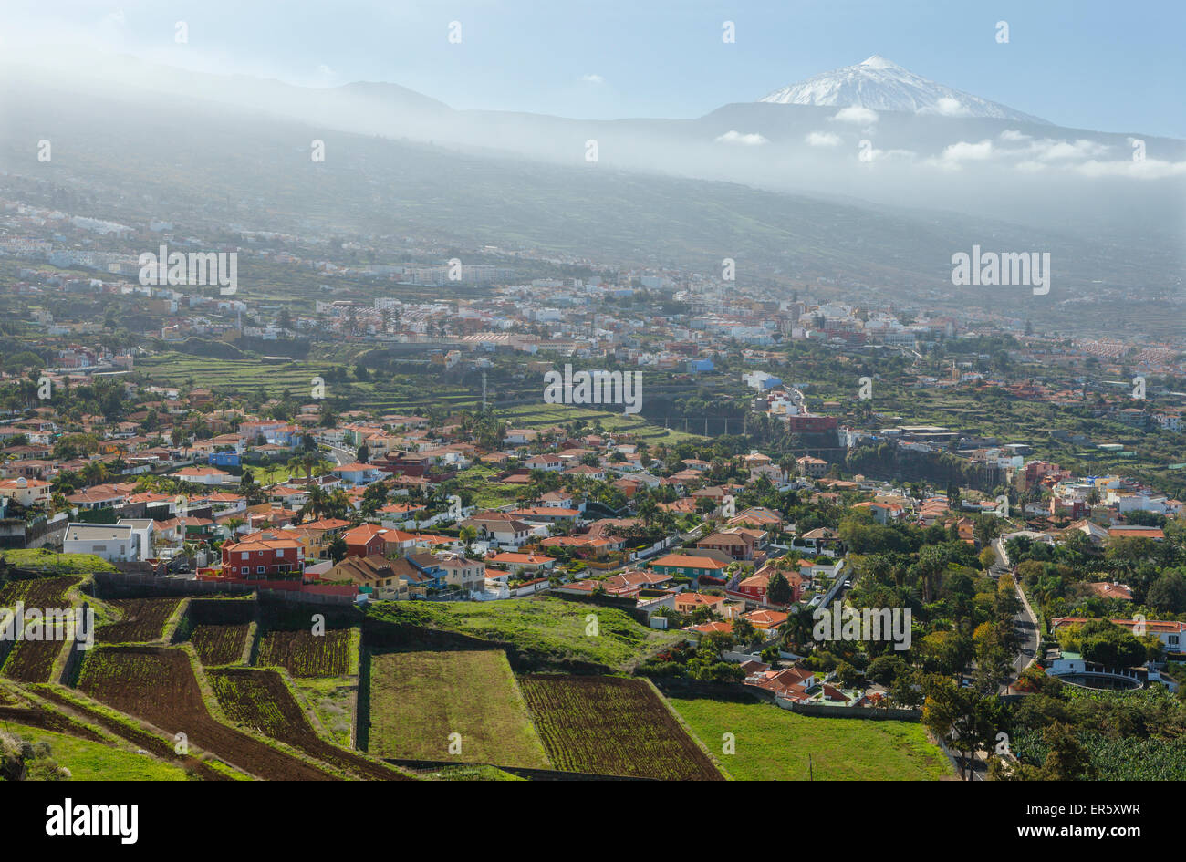 view from Mirador de Humboldt, viewpoint, view over the Orotava valley to Teide, 3718m, with snow, the island´s - Stock Image