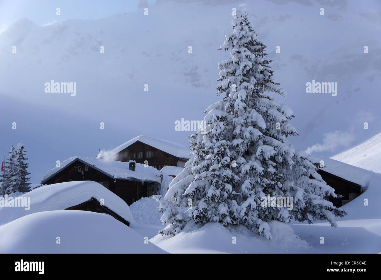 Alp Blumental above resort town Mürren, Bernese alsp Switzerland - Stock Image