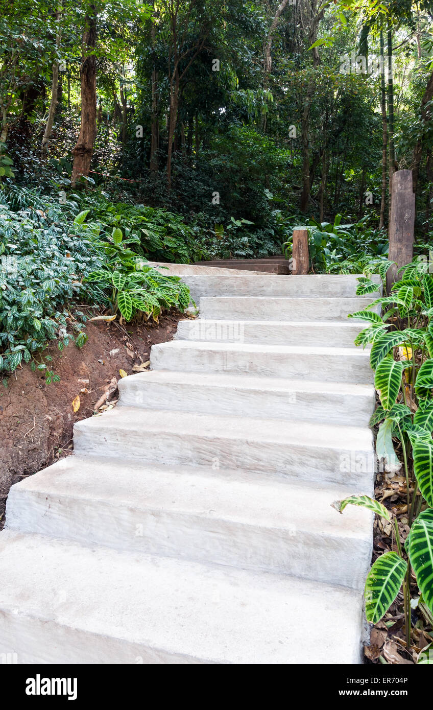 Concrete staircases to the hill of tropical garden. - Stock Image