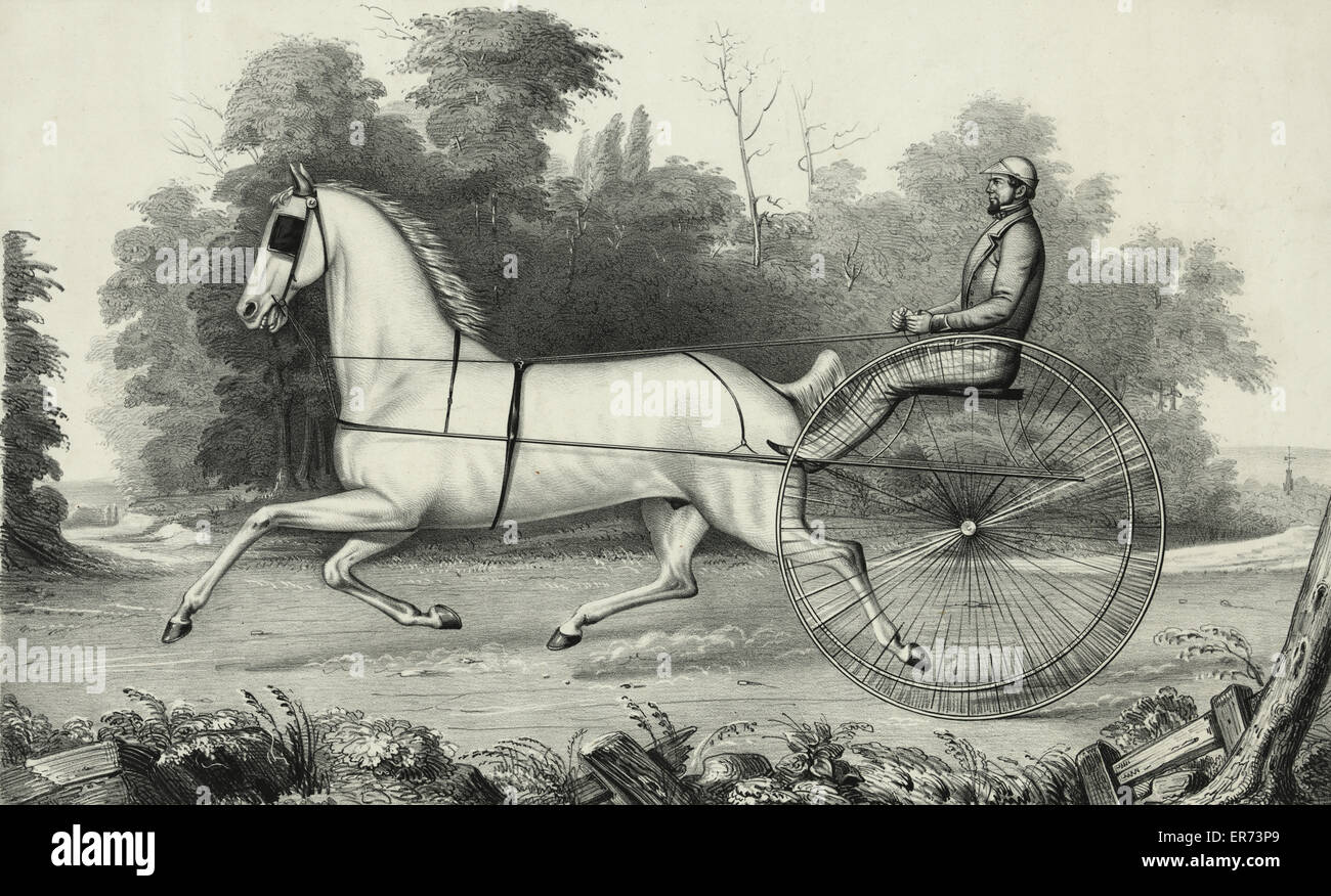 Grey Eagle: driven by Hiram Woodruff, Esq. Date c1850. - Stock Image