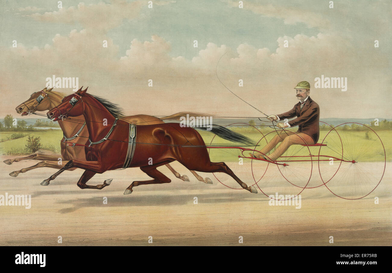 The trotting gelding Frank with J.O. Nay, his running mate: as they appeared at Prospect Park, L.I. Nov. 15th, 1883, - Stock Image