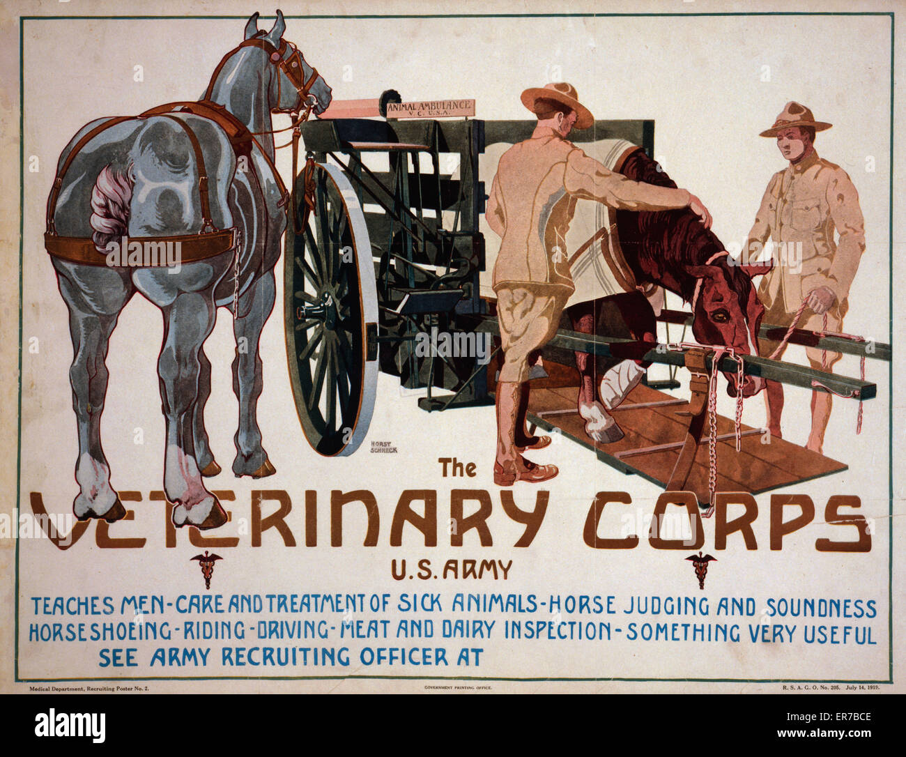 The Veterinary Corps, US Army, teaches men care and treatment of sick animals; horse judging and soundness; horseshoeing; - Stock Image