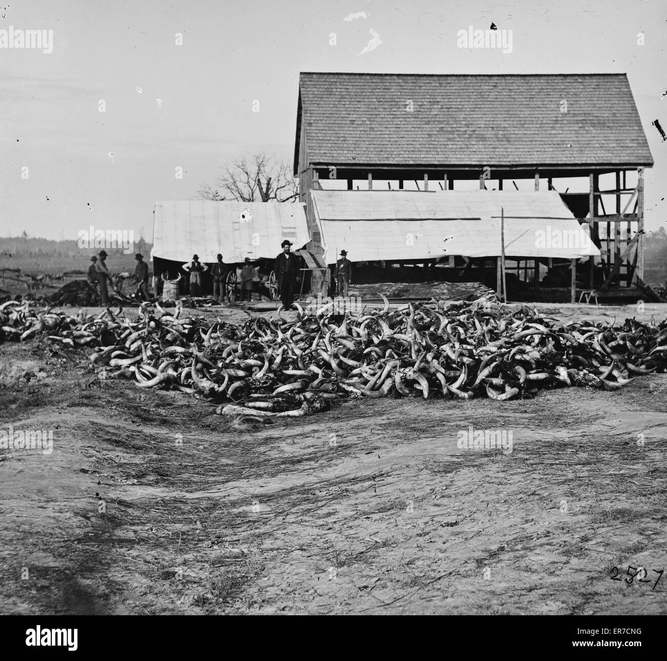 City Point, Virginia. Slaughter house. Date between 1861 and 1869. - Stock Image