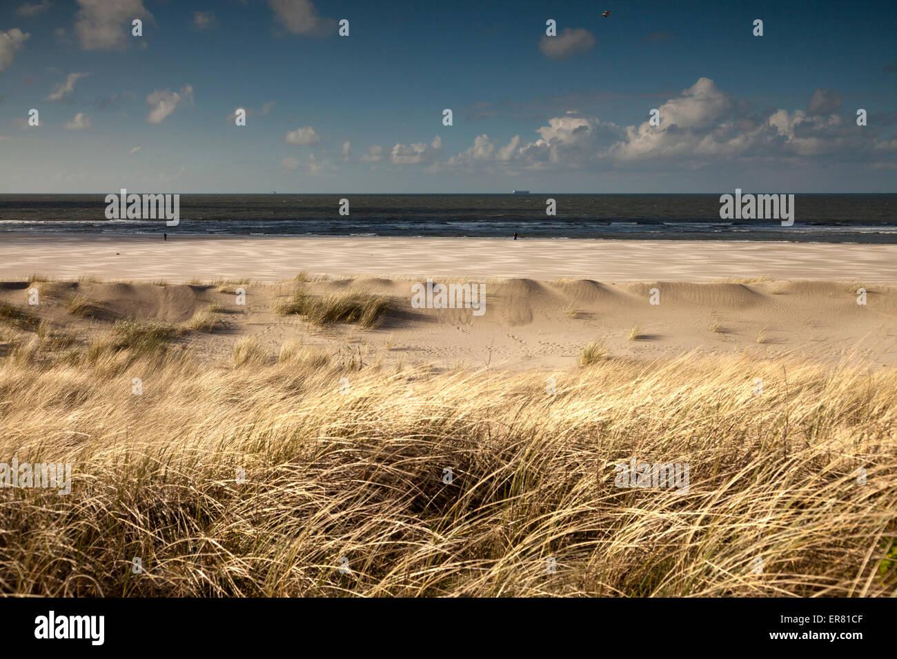 dune landscape on the coast, East Frisian Island Spiekeroog, Lower Saxony, Germany - Stock Image