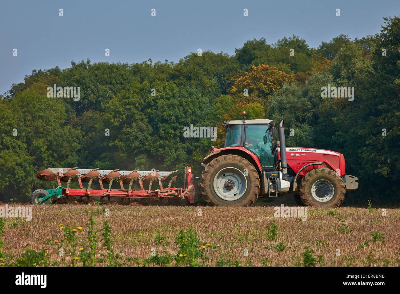 A red Tractor ploughing on Farmland In Kelvedon Essex, UK - Stock Image