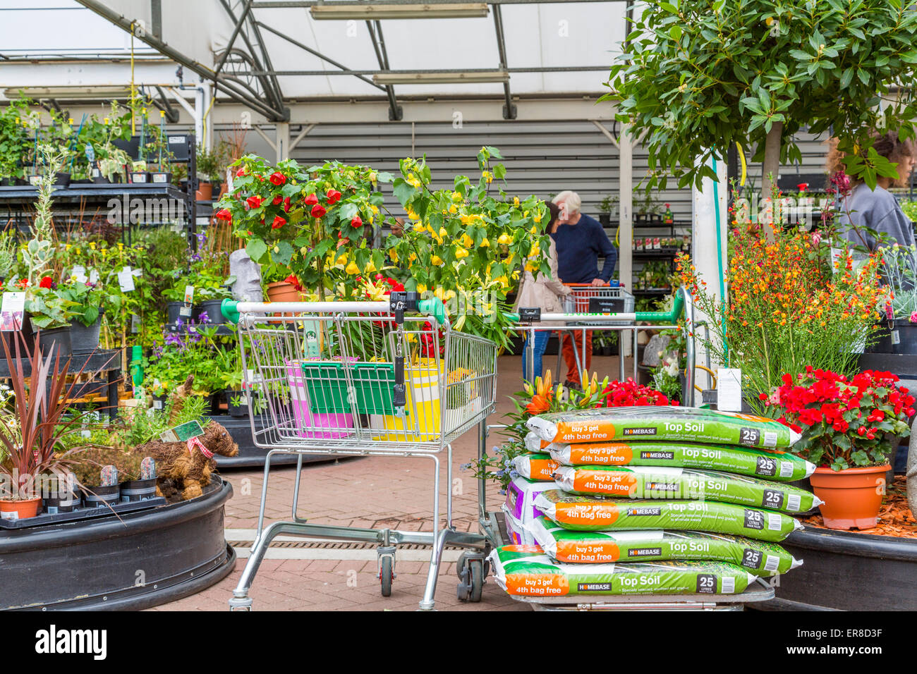 The homebase garden stock photos the homebase garden for Garden trees homebase