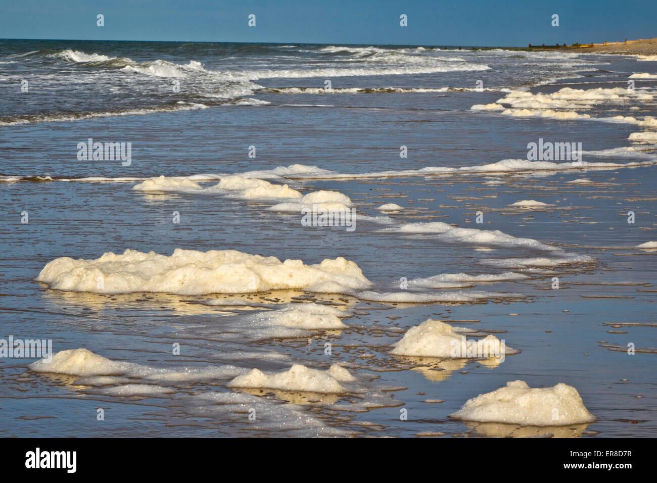Sea foam, ocean foam, beach foam, or spume - Stock Image