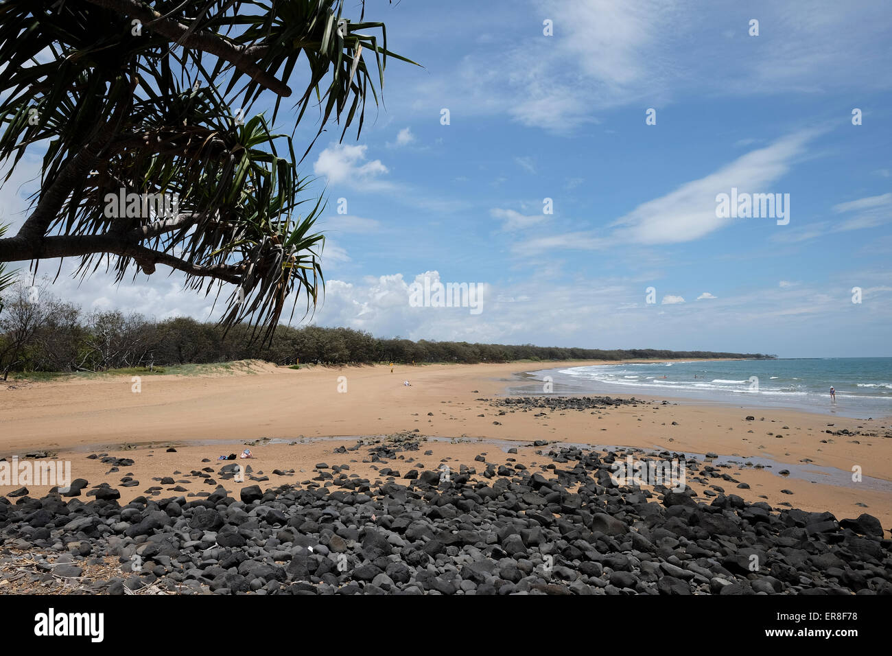 On Mon Repos Beach - Stock Image