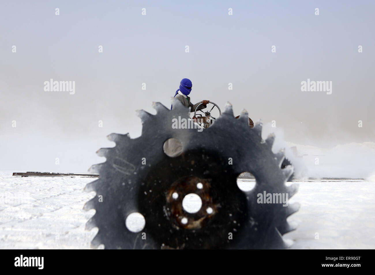 Minya, Egypt. 28th May, 2015. An Egyptian quarry worker is seen through a saw on a limestone quarry at the village - Stock Image