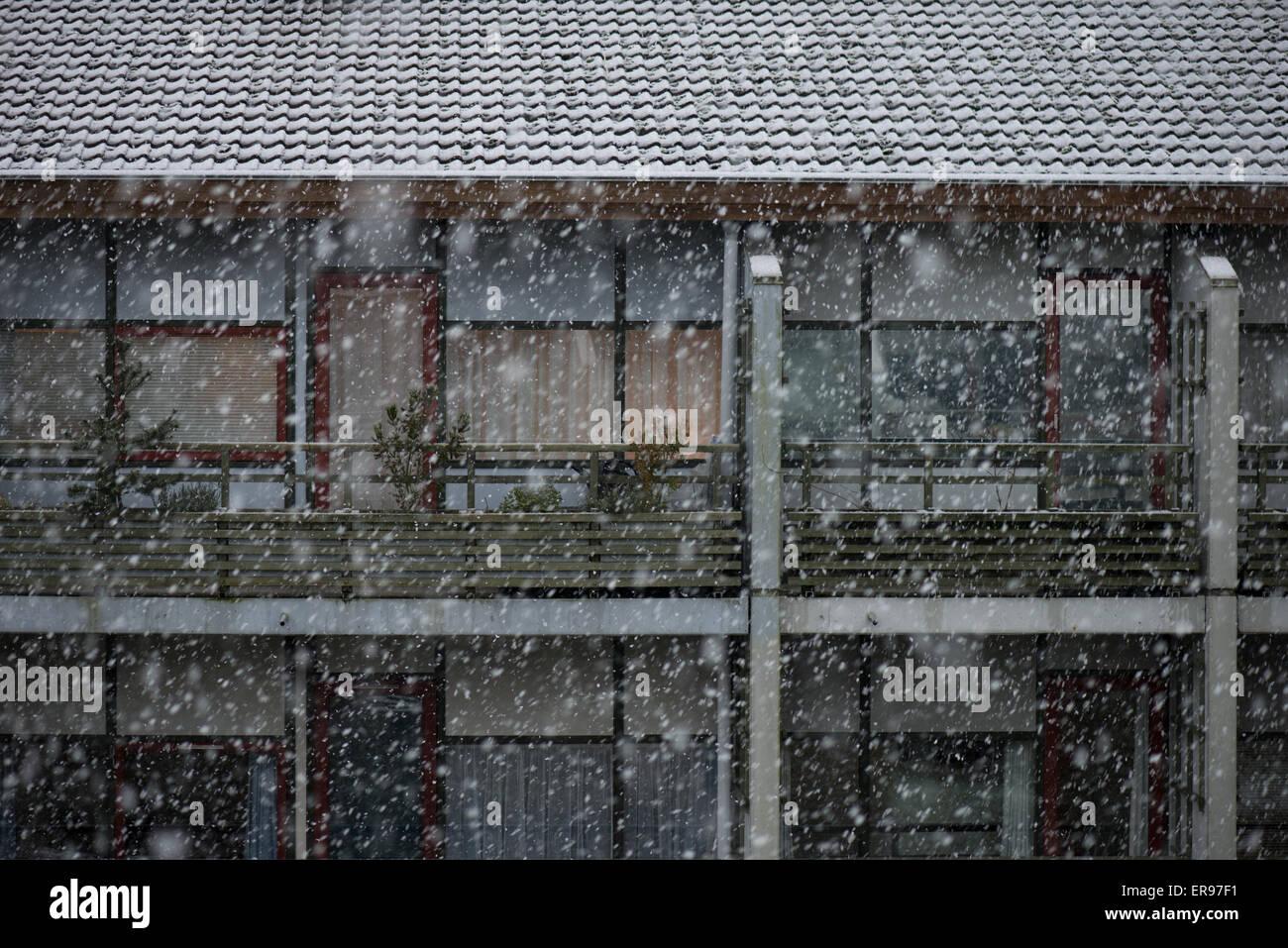 Heavy snow - Stock Image