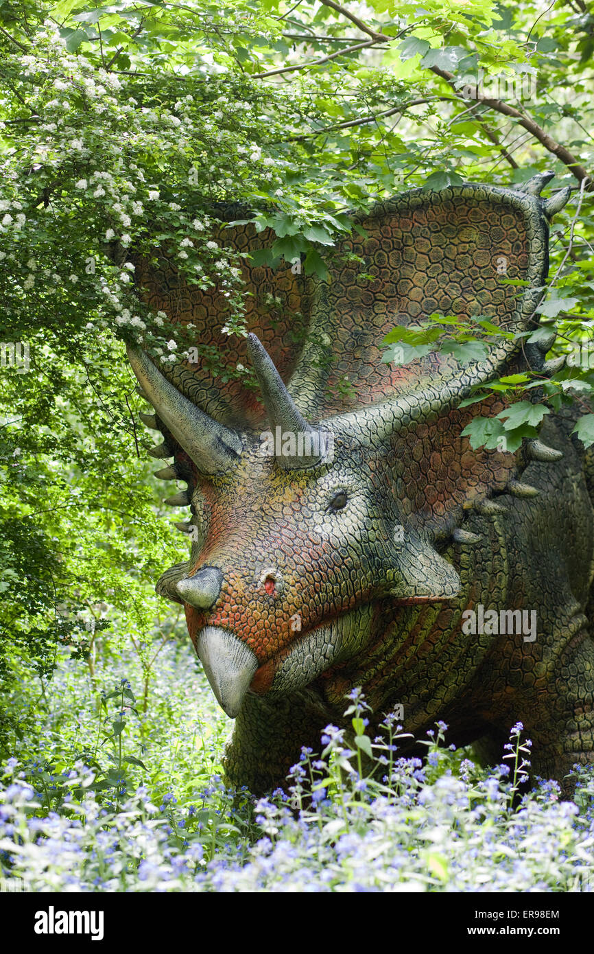 Triceratop Dinosaur Statue walking in the woodlands - Stock Image