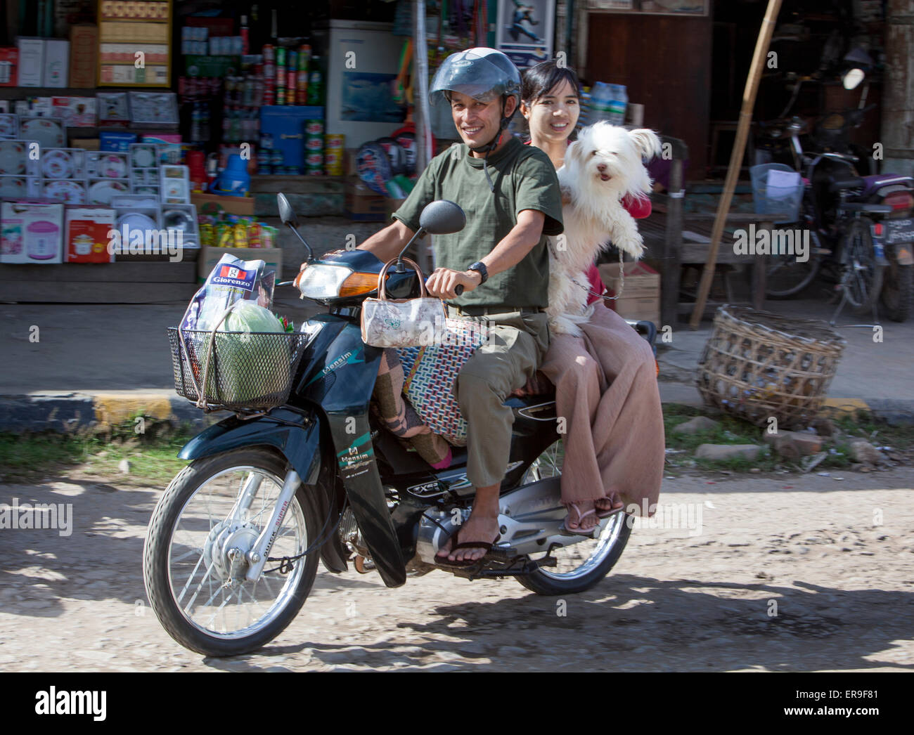 A man rides his motor-cycle in the Burmese town of Hsipaw. His woman passenger holds a large white dog. - Stock Image
