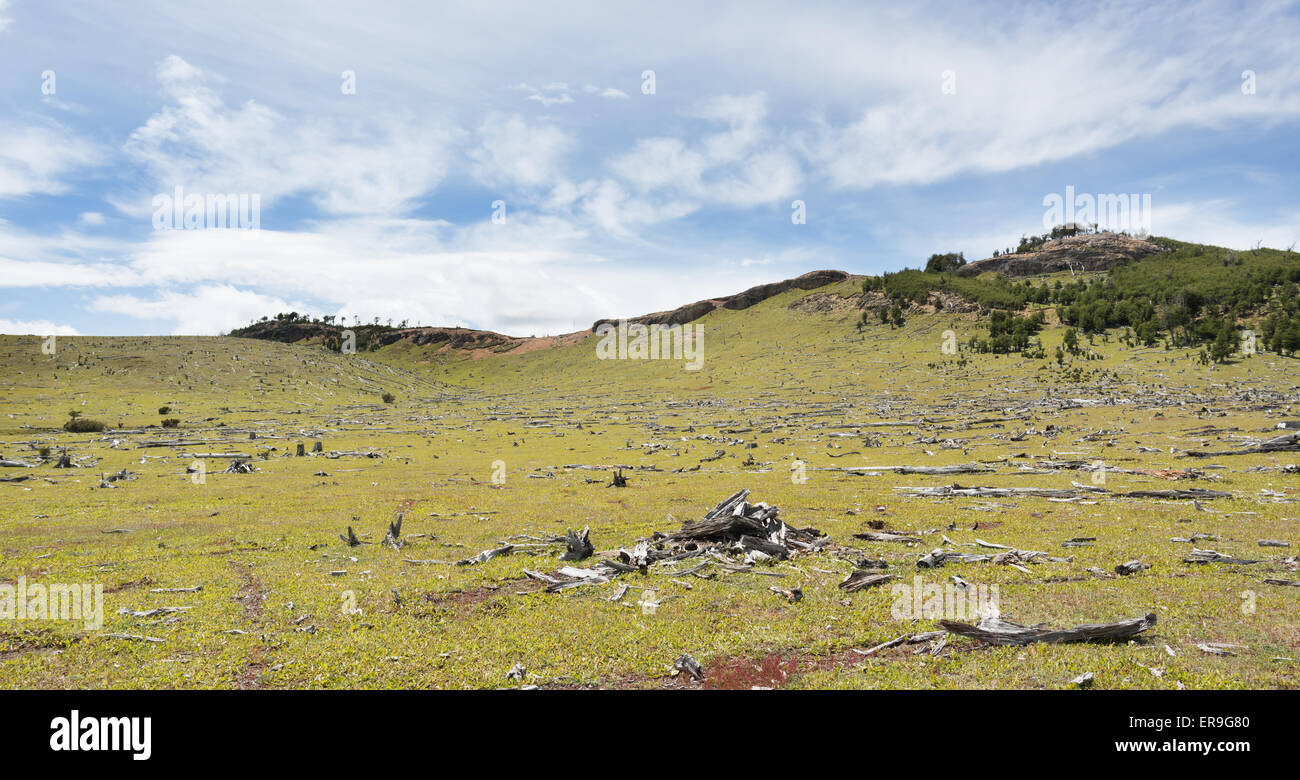 From the Carretera Austral, Chile - Stock Image