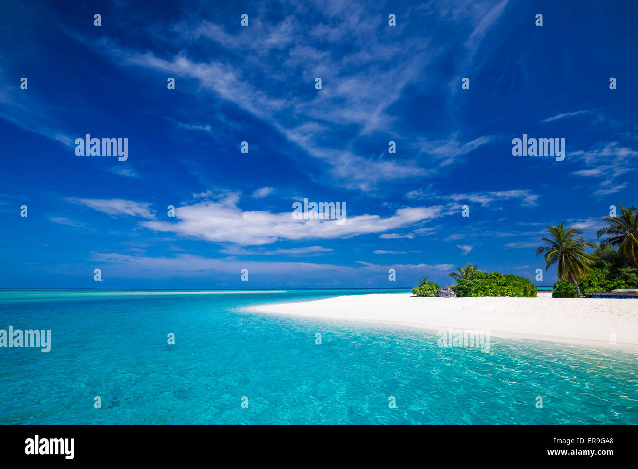 White tropical beach in Maldives with few palm trees and blue lagoon - Stock Image