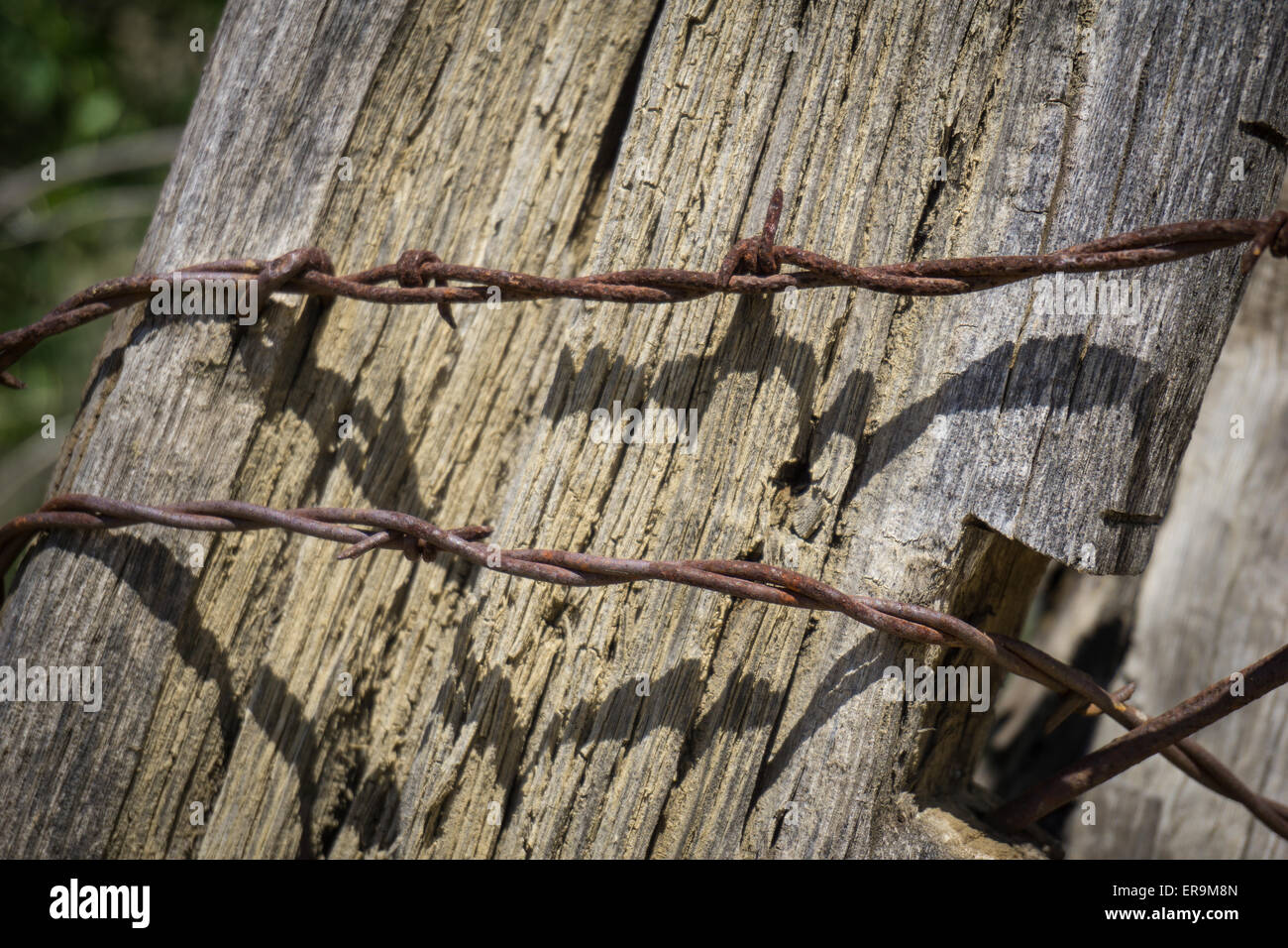 Twisted Fence Stock Photos & Twisted Fence Stock Images - Alamy