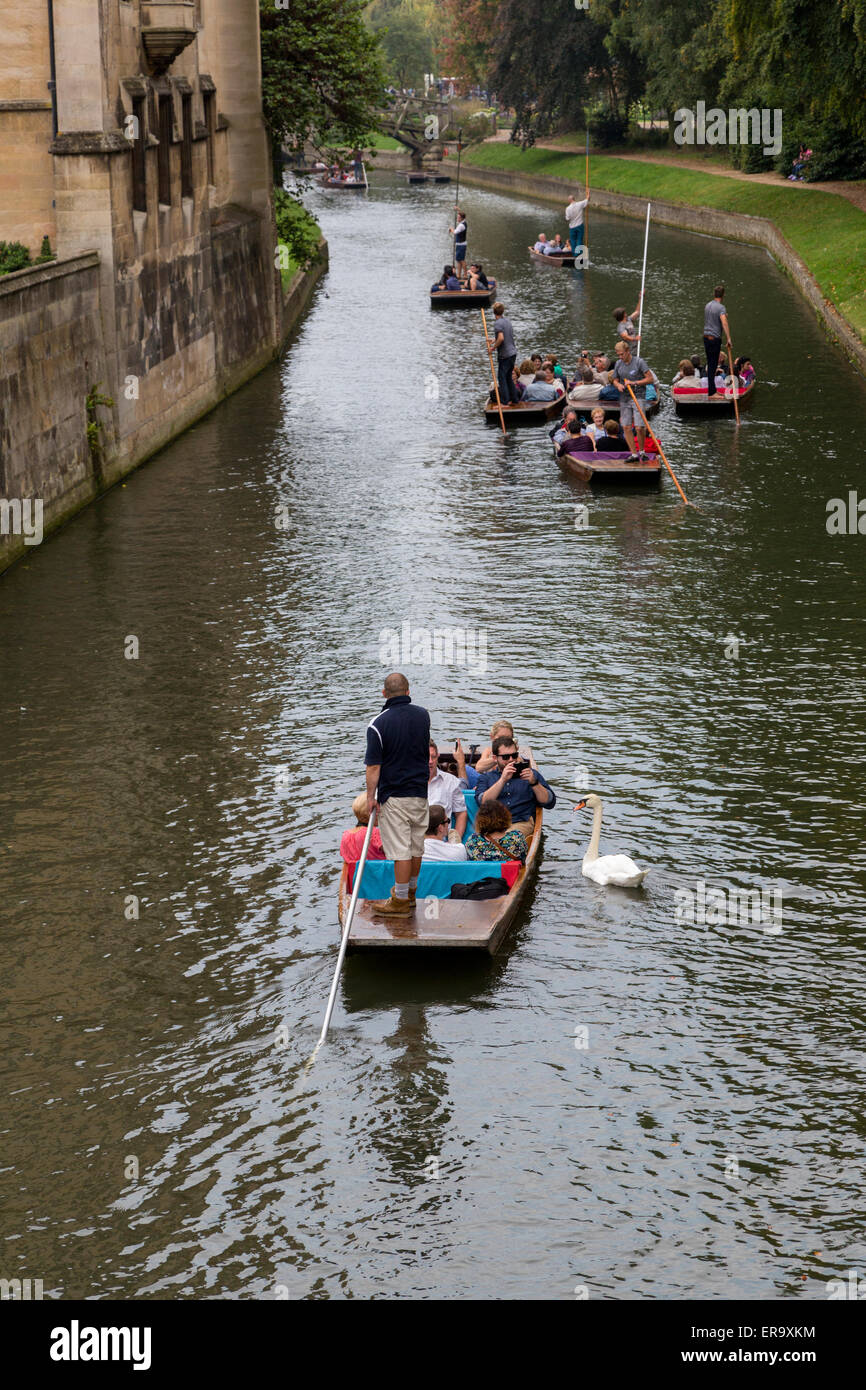 UK, England, Cambridge.  Punting on the River Cam. - Stock Image