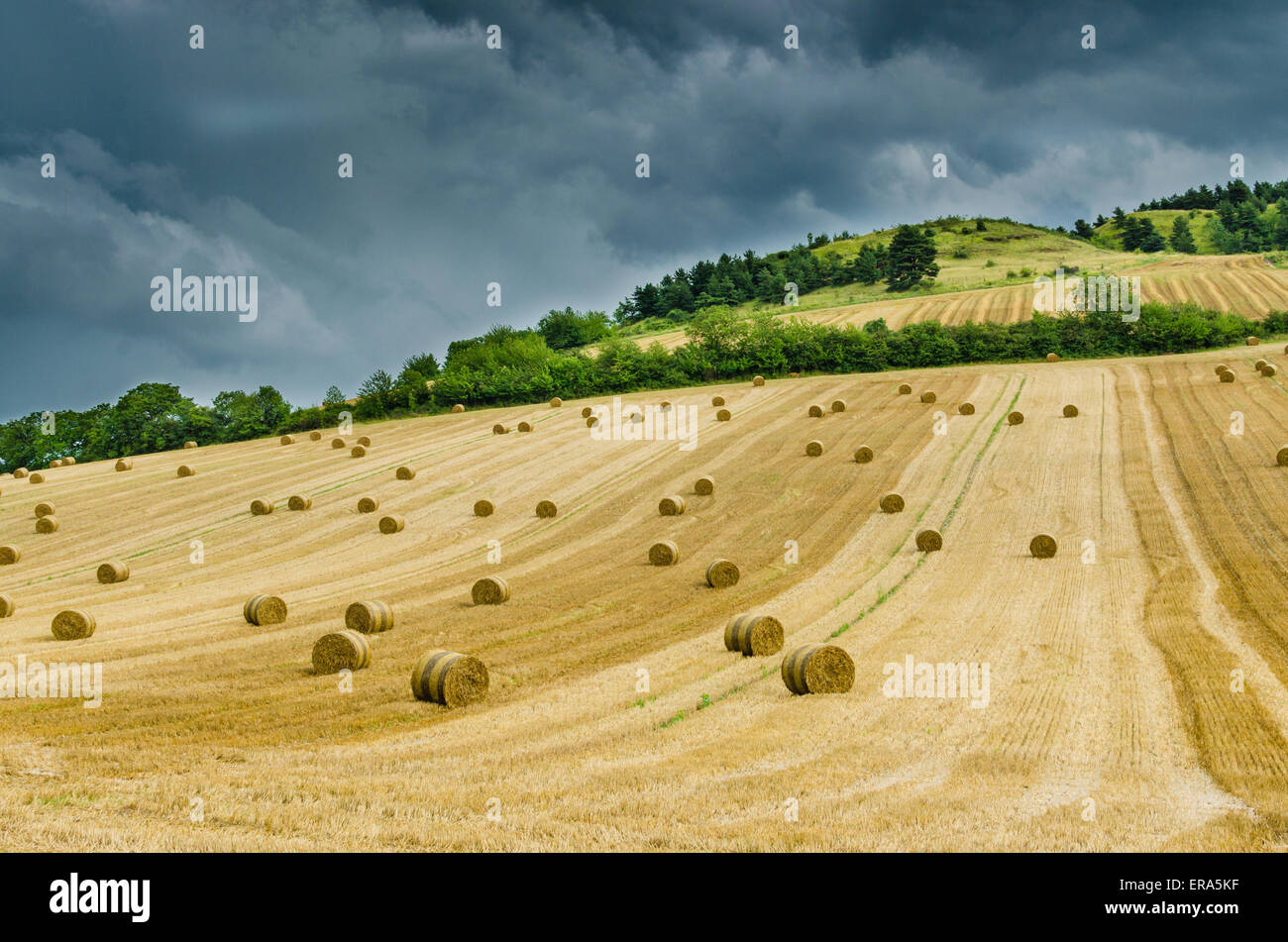 Hilly landscape rural landscape with hay bales - Stock Image