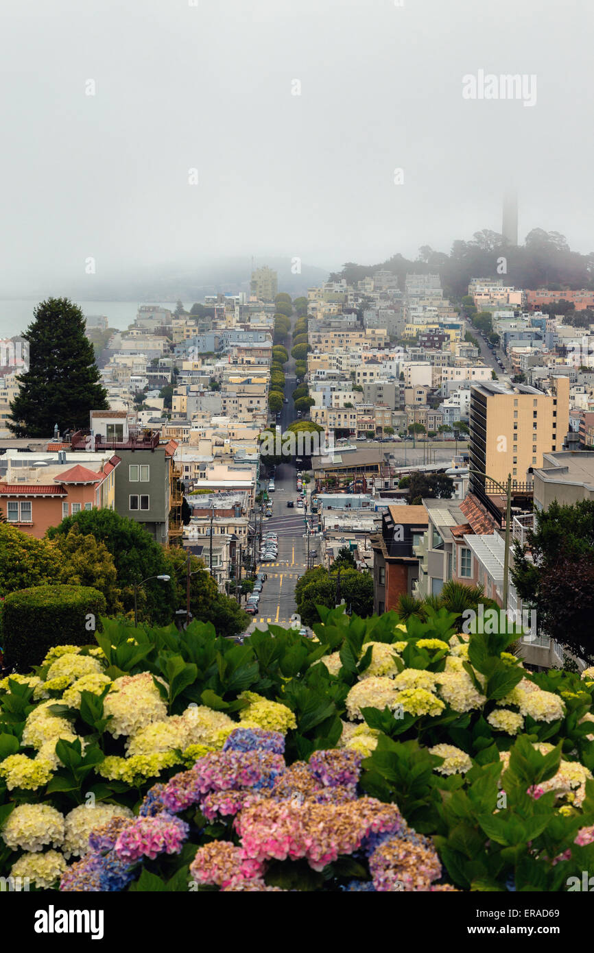 View from the top of Lombard Street, San Francisco - Stock Image