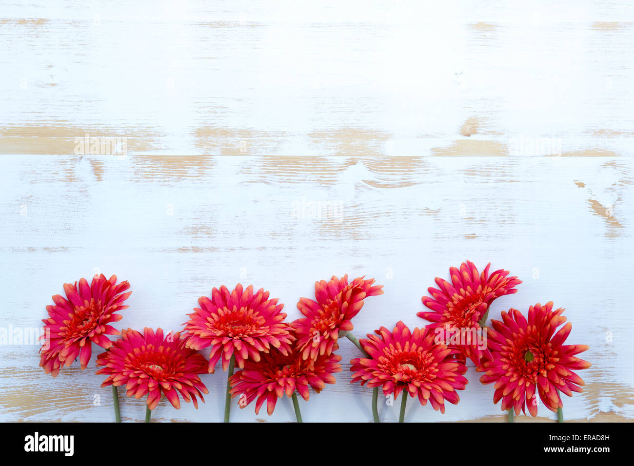 Bunch Of Beautiful Red Flowers On A White Vintage Wooden Background