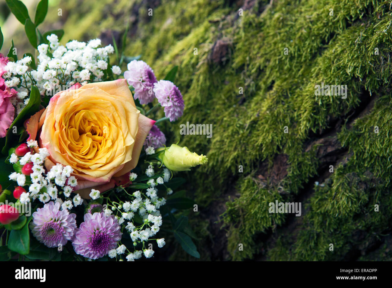 Flower Arrangement With Yellow Rose Next To Green Moss Stock Photo