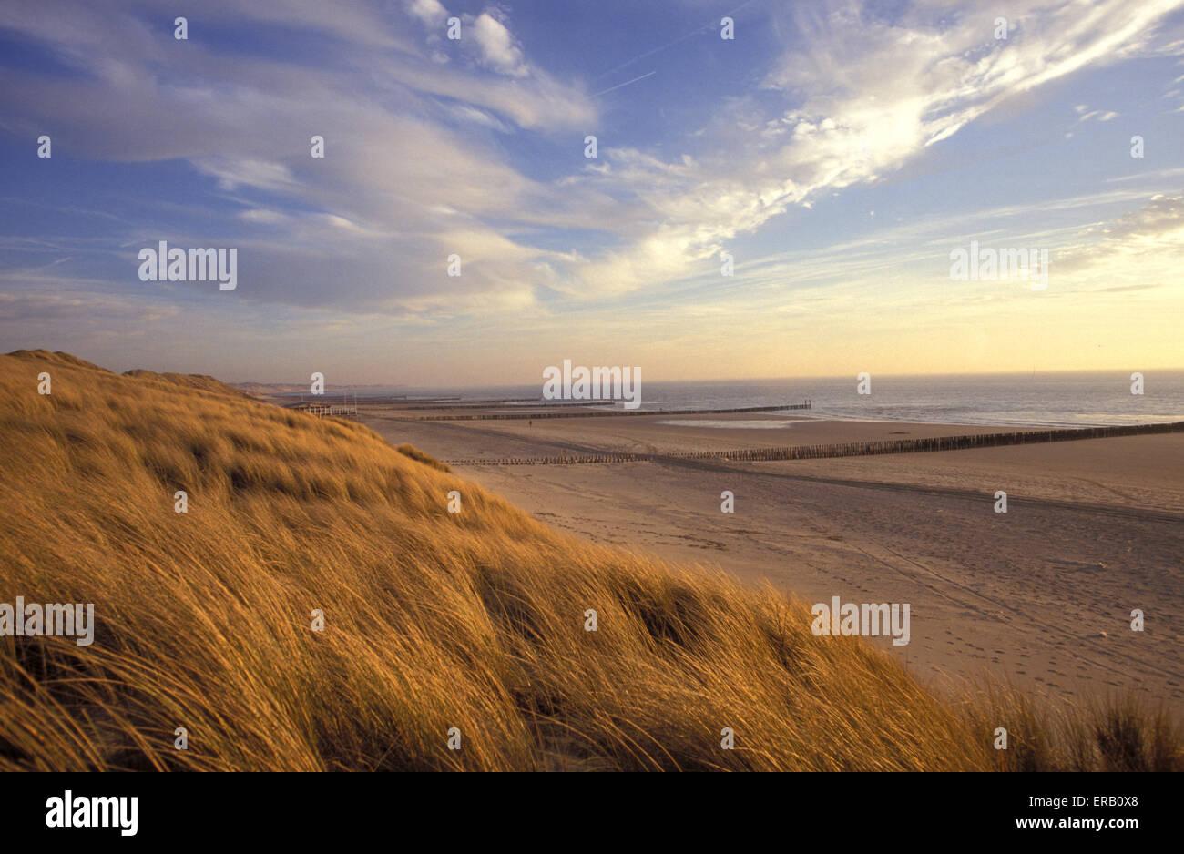 NLD, Netherlands, at the beach in Westkapelle on the peninsula Walcheren.  NLD, Niederlande, am Strand von Westkapelle - Stock Image