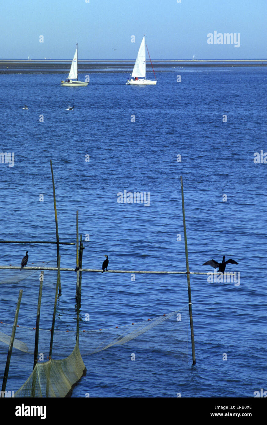 NLD, Netherlands, boats at Goree-Overflakkee in Zeeland.  NLD, Niederlande, Boote vor Goree-Overflakkee in Zeeland. - Stock Image