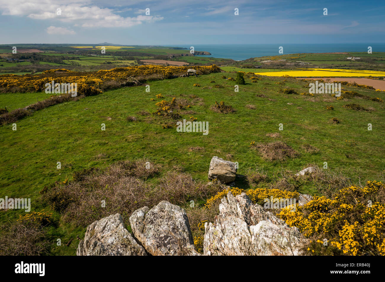 View of the Pembrokeshire Coast and Ffyst Samson Neolithic Chambered Tomb - Stock Image