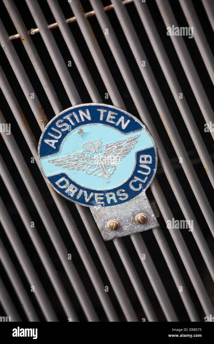Austin Ten Drivers Club badge on front grille of Austin Ten car - Stock Image