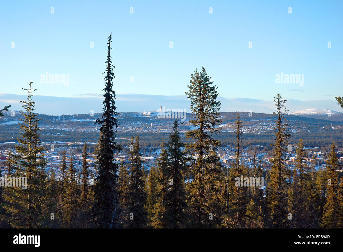 beautiful Lapland winter forest front of city - Stock Image