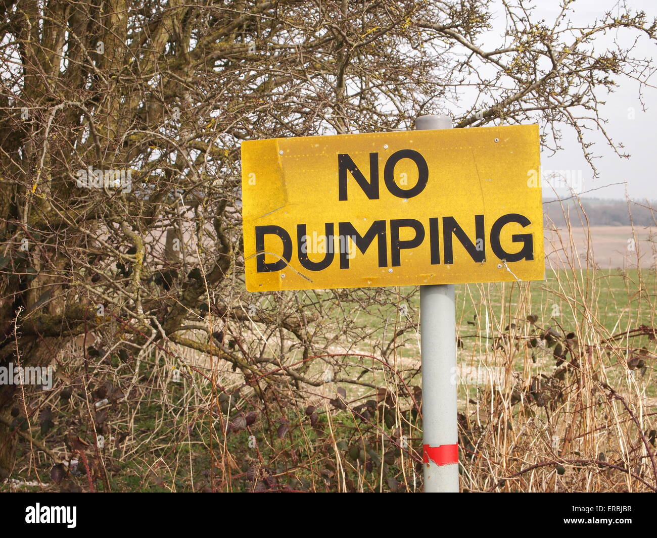 Yellow NO DUMPING sign on a post - Stock Image
