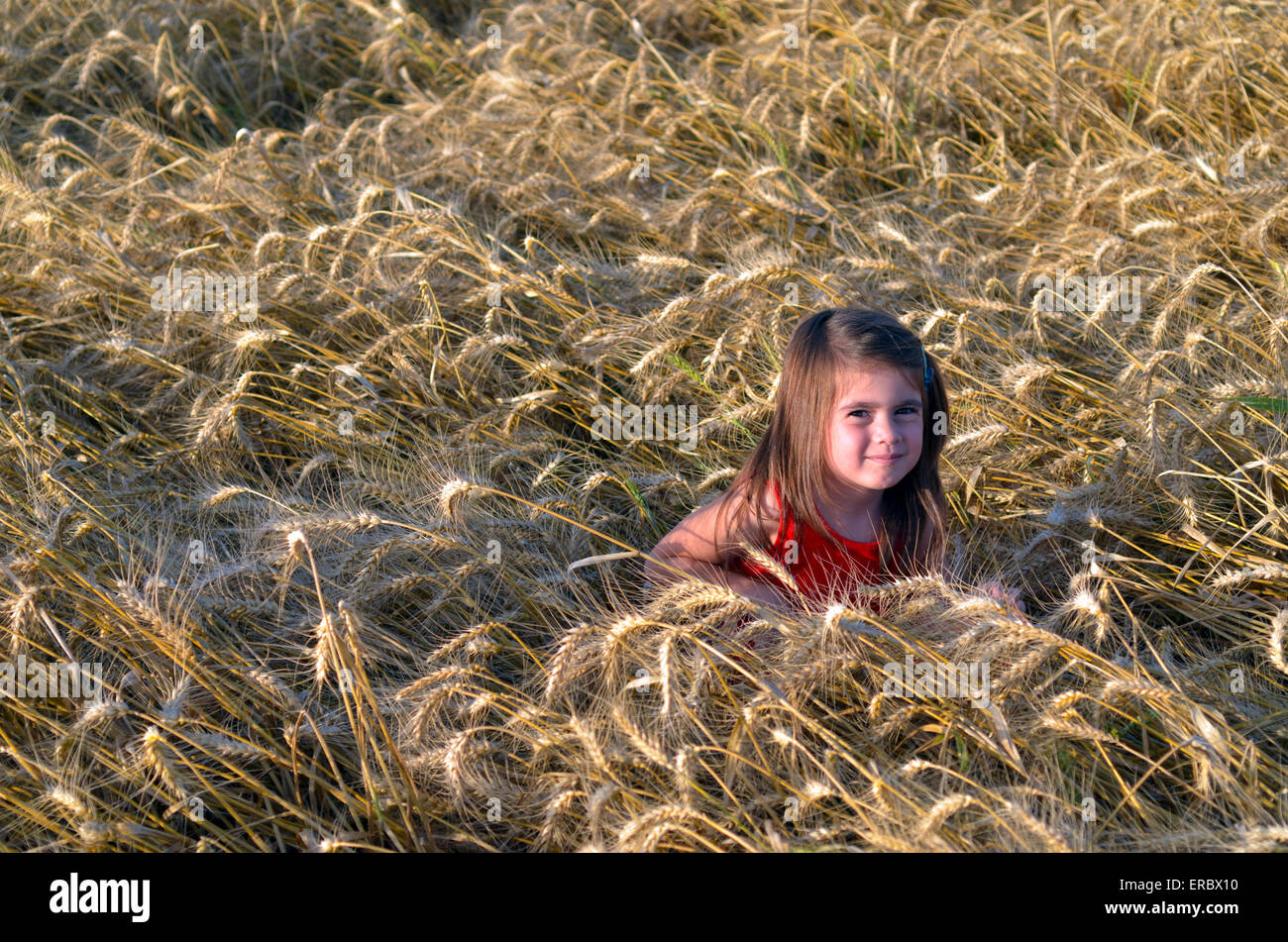 Little Jewish Israeli girl sit in wheat field in Shavuot Jewish Holiday - Stock Image
