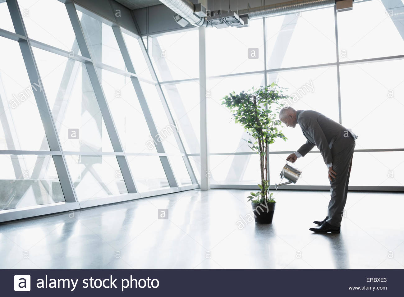 Businessman watering potted tree in modern office - Stock Image