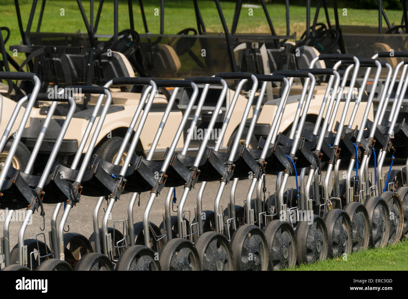 Row of golf trolleys - Stock Image